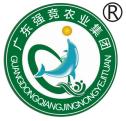 珠海强竞供应链管理集团有限公司